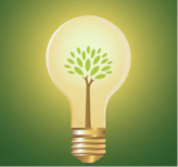 Light Bulb with Tree Graphic
